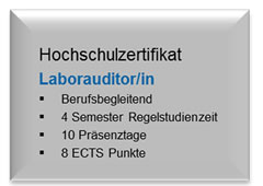 Laborauditor/in