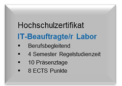 IT-Beauftragte/r Labor