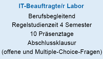 IT-Beauftragte